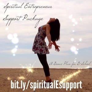 Spiritual Entrepreneur Support Package for B School